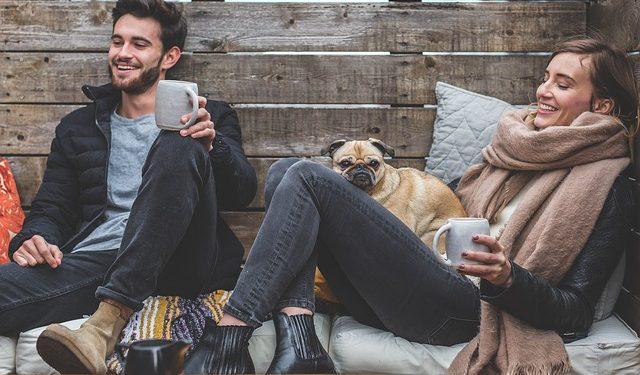 restaurantes para perros en Madrid y Barcelona