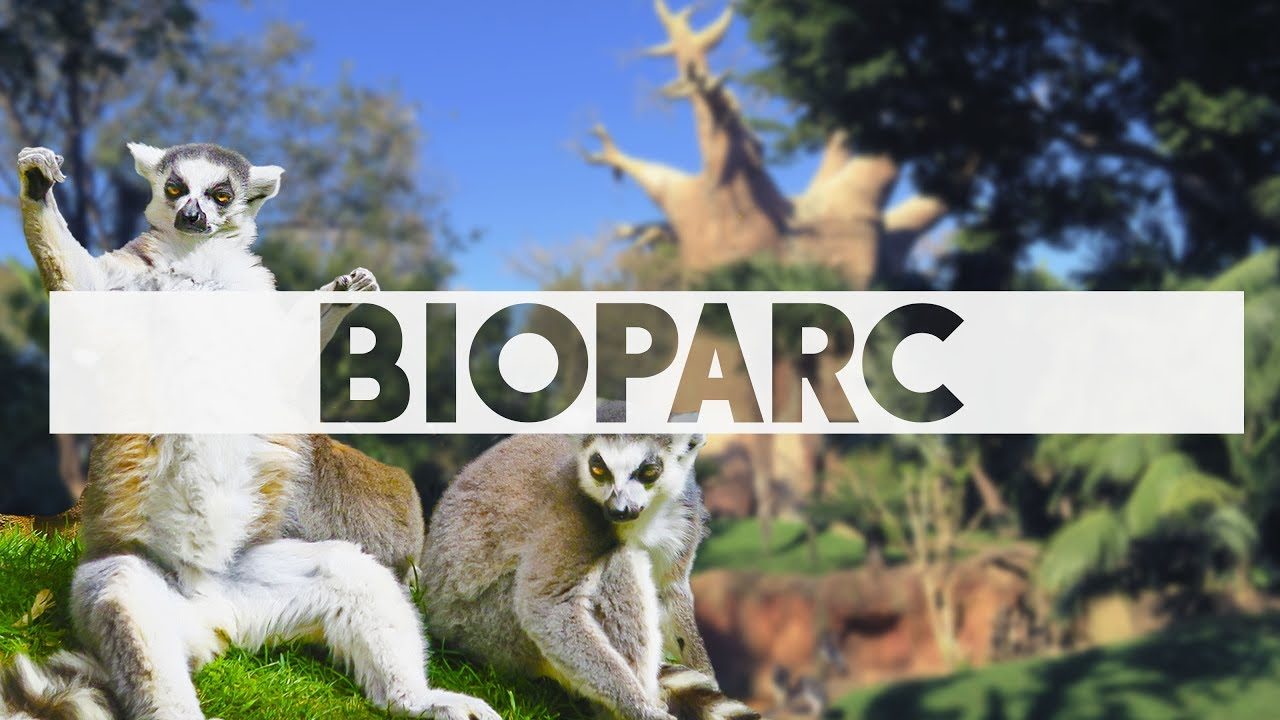 biopark fuengirola